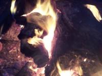 огоньки, костер на Алтае,Уймонская долина