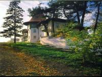 dom-kamenskih