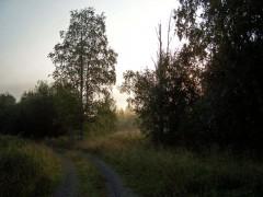fbrusnika_003